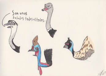 Ratites by zebG