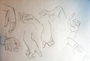 Hooman Paw Study