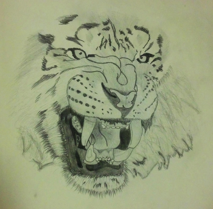 Angry Tiger Face Drawings
