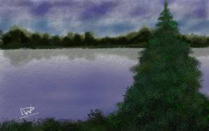 Spruce on a Lake