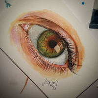 Eye study by Divinor