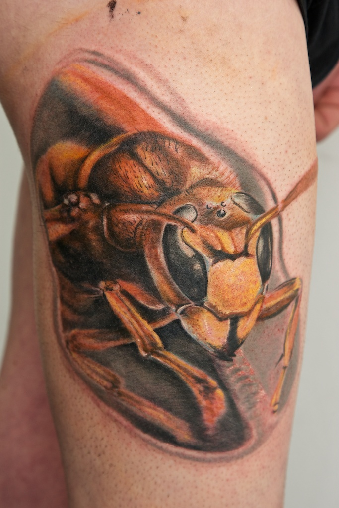 hornet tattoo wip by graynd