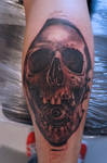 skull tatto WIP by graynd