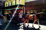New Orleans City Life