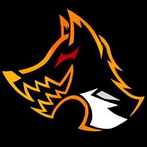 ElrokFoxx's Profile Picture