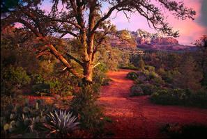 Sedona Sunset by Minorhero