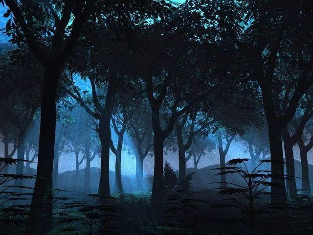 [Kumo] Floresta Negra Forest_by_starskq