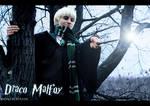 Draco - 'Harry Potter'.