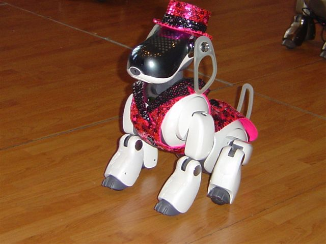 Columbia AIBO by colorado-beetle