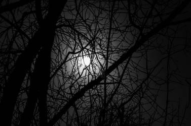 Wintermoon 2 by Blazemorioz