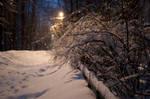 Winter by Blazemorioz