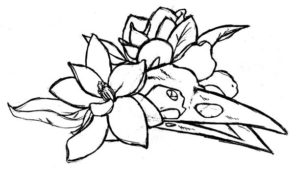Sketchy Magnolia by EternityEmporium