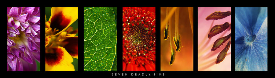 Macro models, 7 deadly sins pk by VintageWarmth