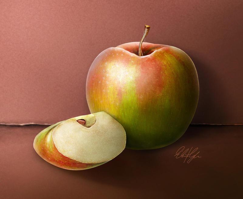 Hyperrealism Practice Macintosh Apple