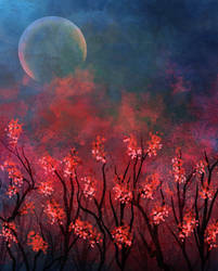 Crimson Spring