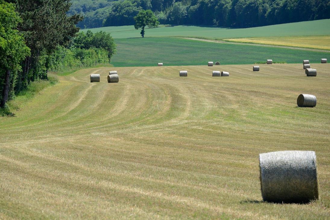 Haystacks by NB-Photo