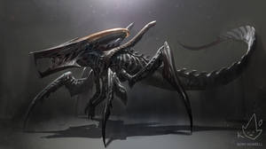 Xenomorph + Starship Trooperes Warrior Bug