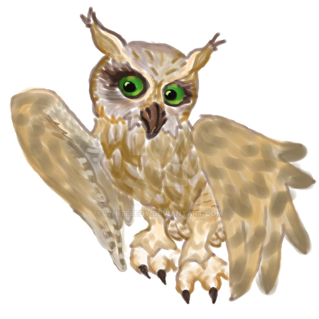 owl by WhiteLedy