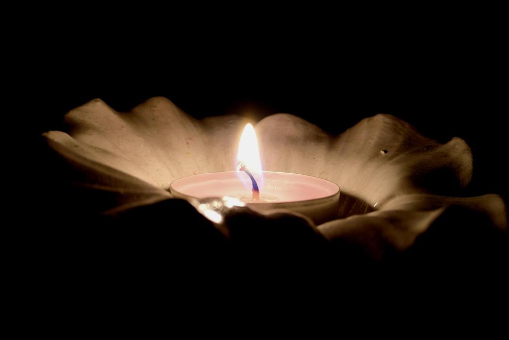 Flowery Candle by lardix3