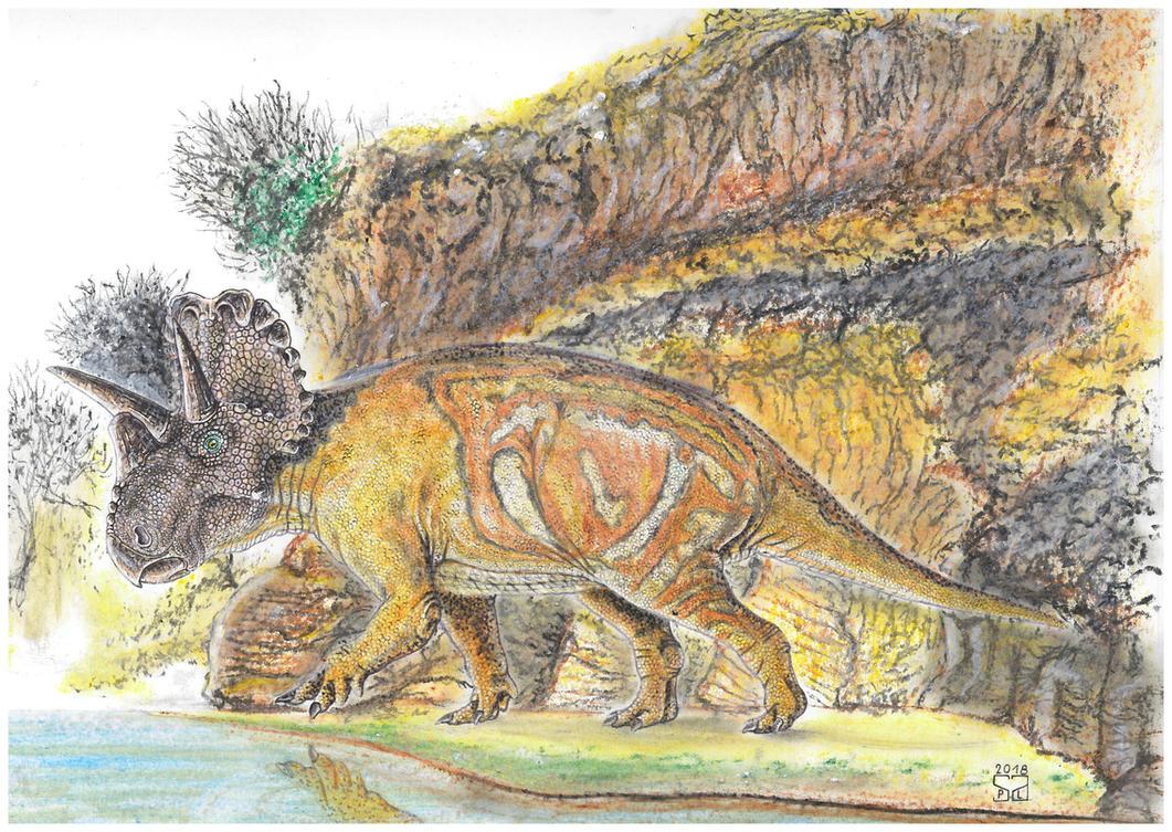 Wendiceratops pinhornensis by PedroSalas