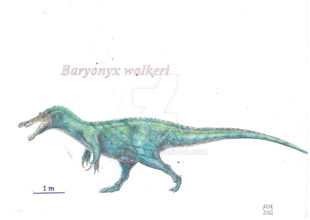 Baryonyx walkeri by PedroSalas