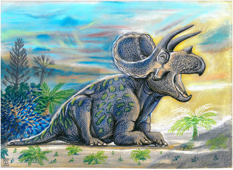 Triceratops Pops