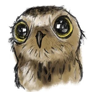 cute cartoon owls wallpaper