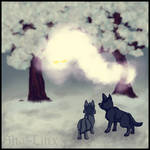 Grey Wolves and White Ghost