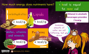 Energy in nutriments by Mochuelitofriki