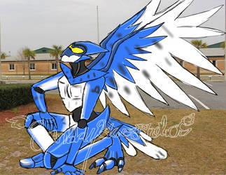 Bluejay Flyer-Contest Entry by ScribblySkiesStudios