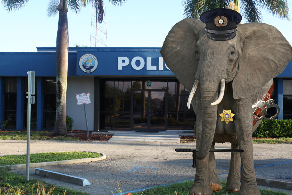 police_station_elephant_by_uranimated18-