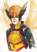 Hawkgirl by JorgeSantiagoJr