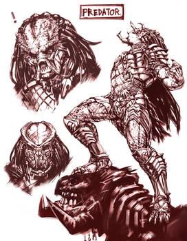 Predator Sketching