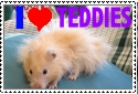 Teddy Bear Hamster Stamp by Enirre-Poketo