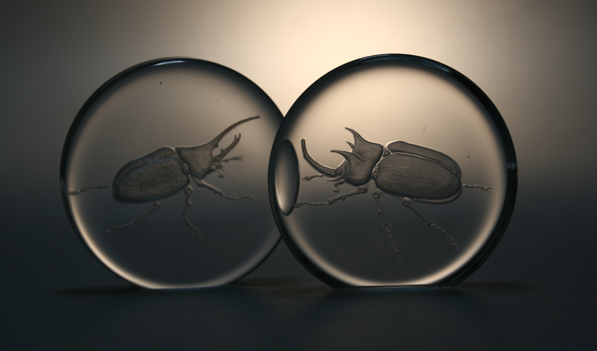 beetle paperweights by Viczan