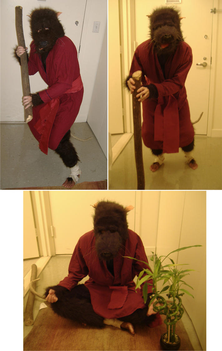 Master Splinter Costume by TheLionHearted on DeviantArt