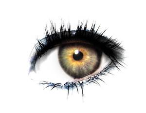 Eye serie 49