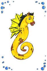 Seahorse Spirit by sparkycom