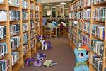 Ponies in a Library