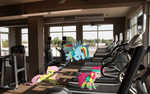Pony Workout by Bryal
