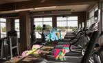 Pony Workout