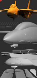 F-14D wip 2 Nose by Siregar3D