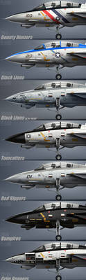 F-14D Squadrons by Siregar3D