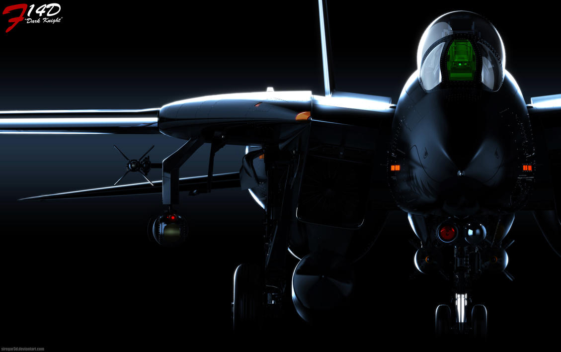 F-14D Dark Knight by Siregar3D