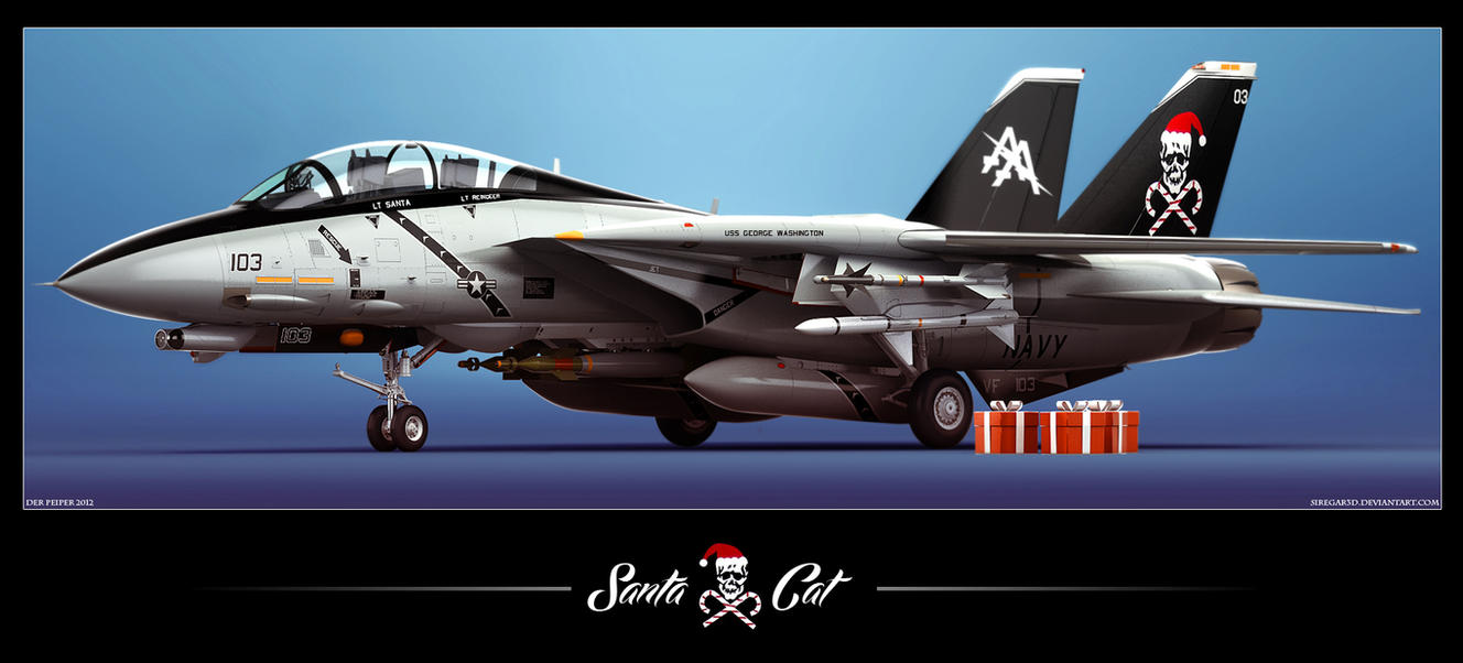 F-14D Santa Cat by Siregar3D