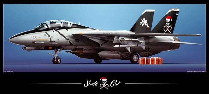 F-14D Santa Cat