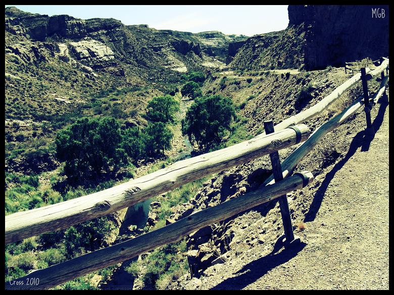 Mis fotos viaje a Mendoza 2010