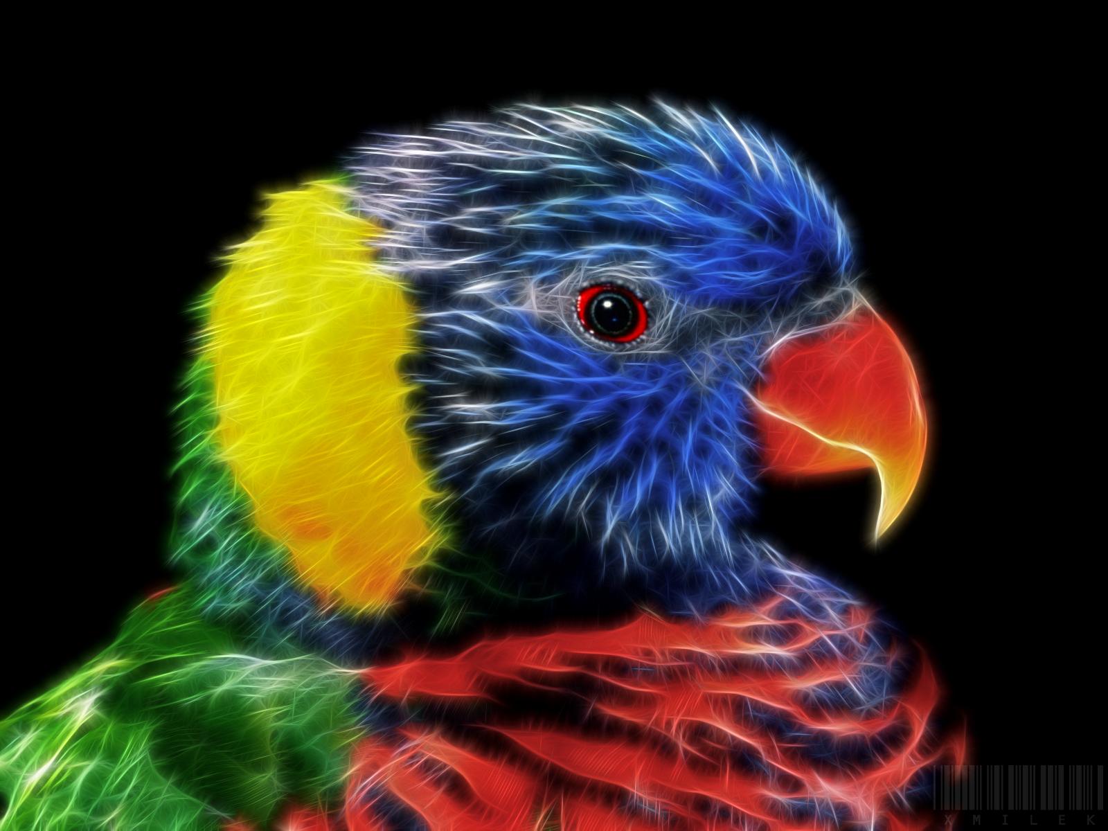 Coloring by xmilek