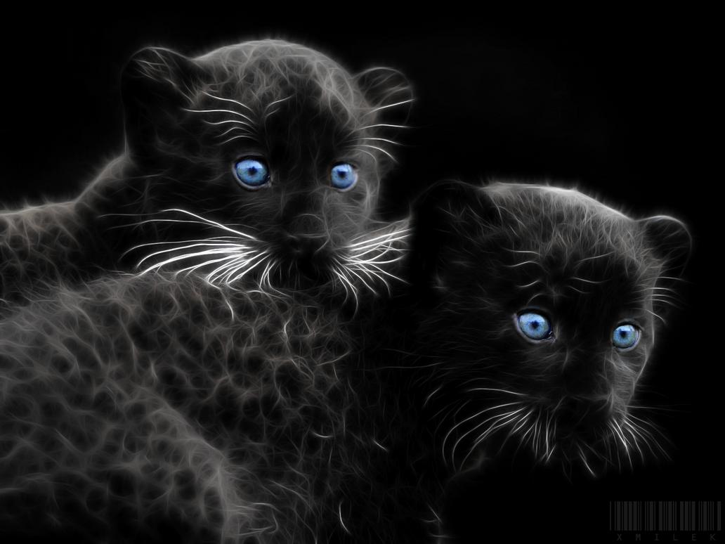 Twins by xmilek