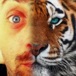 xmilek's Profile Picture